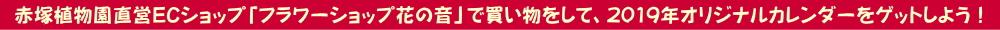 2019年カレンダープレゼント|赤塚植物園
